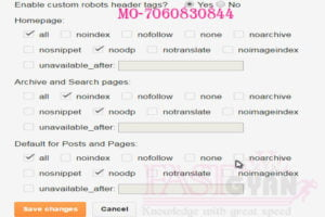 custom robots header tags